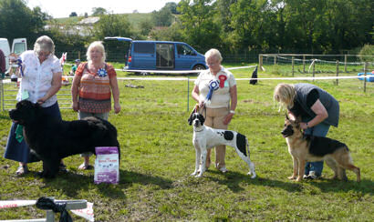 Fun Day Companion Show winners