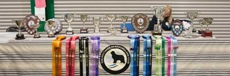Southern Newfoundland Club Open Show trophies
