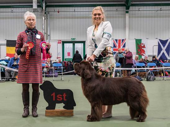 Winner of Junior Handling [12 - 16 Years]