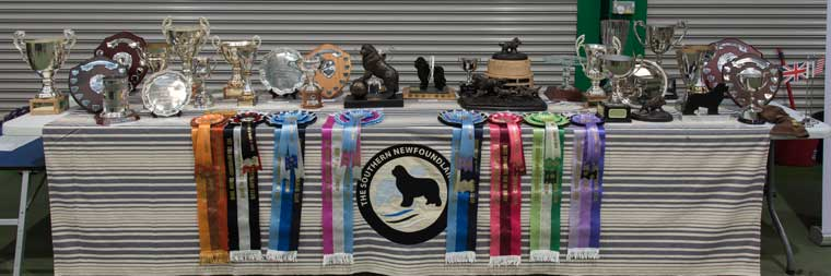 Trophies for winners at the Championship Show
